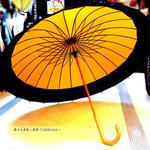 【人気】 傘専門店 通販 東京 メンズ レディース 雨傘 サビにくい 旅傘【蛇の目 24本骨 山吹 】