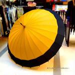 60㎝ 傘専門店 通販 東京 メンズ レディース 雨傘 サビにくい 旅傘【蛇の目 24本骨 山吹 】