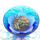 【1,000円お得!】すーらく茶(30ティーバッグ)《定期購入》