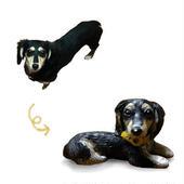 愛犬の分身ストラップ