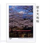 NEW  ポストカード同柄3枚入りー② (3種類掲載)