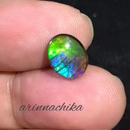 【幸福の石】宝石質アンモライトルース
