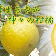 じゃき払い(300ml)