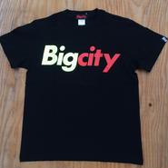 ポンプ フューリーカラー Bigcity logo s/stee