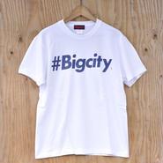 #Bigcity logo s/stee WHITE