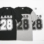 BxH A.O.T.S Hockey Shirts