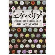 書籍 多肉植物エケベリア GUIDE  TO  ECHEVERIA  改訂版