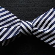 3P Silk Rep Stripe Butterfly Tie (Blue)