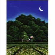 「星を見つけてください」ポストカード