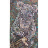 博士考拉 (Doctor Koala)