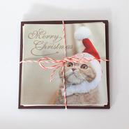 ミニクリスマスカード ふくサンタ(5枚セット)
