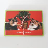 クリスマスカード ごま&めめ親子(5枚セット)