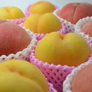 食べ比べセット⑦ 9種類の桃を食べ比べ!(各約5キロ)