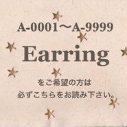 A-0001〜A9999でイヤリングへの変更の方は必読