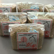 【春の玄米フェア♪】ご家庭の炊飯器で簡単に炊ける「無洗米 卑弥呼の玄米」 1kg×6