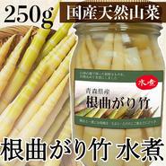 青森県白神産地産:根曲がり竹水煮250g【クール代込】