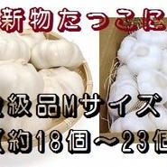 《並級品》新物たっこにんにく(熟成乾燥)Mサイズ 1kg)