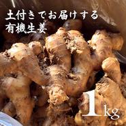 有機生姜(生鮮)土付き 1kg