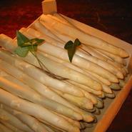 【期間限定】フランス産ホワイトアスパラガス ( Asperges blanches ) / 4~6本