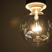 電球 #2