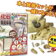 【触れる図鑑】化石発掘∫ZH-ZUK-0401_2∫