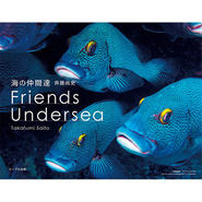 海の仲間達 Friends Undersea