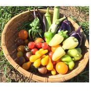 おすすめ野菜セット(農薬不使用・化学肥料不使用栽培)