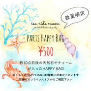 PARTS HAPPY BAG 2017
