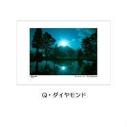 ポストカード 同柄3枚入りセット新作②(3種類掲載)
