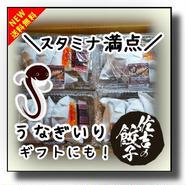 ❆うなぎ冷凍餃子 地方発送☆10個 ×4パック☆