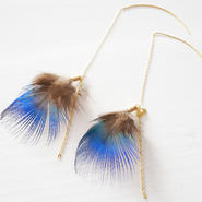 Peacock feathers pierce