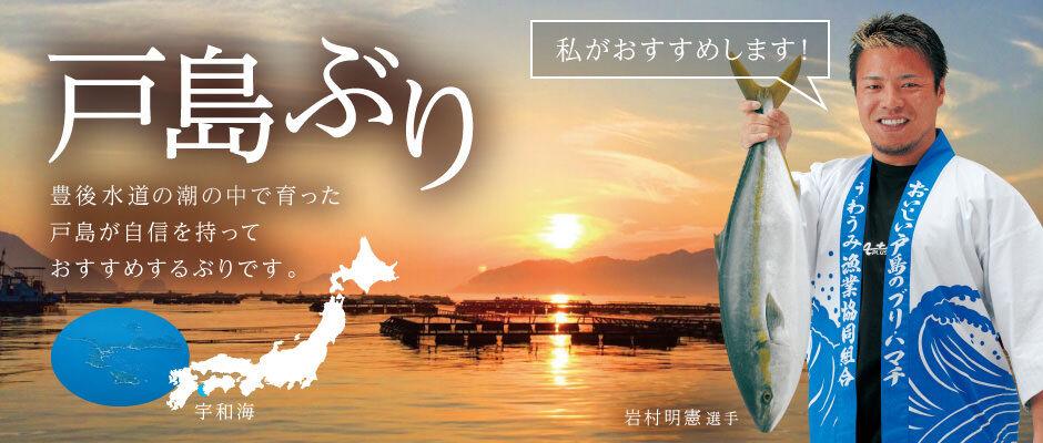 愛媛県宇和島市のグルメ直送Aqua Plusーアクアプラスー