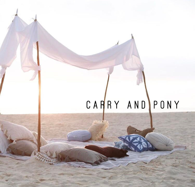 carry_and_pony