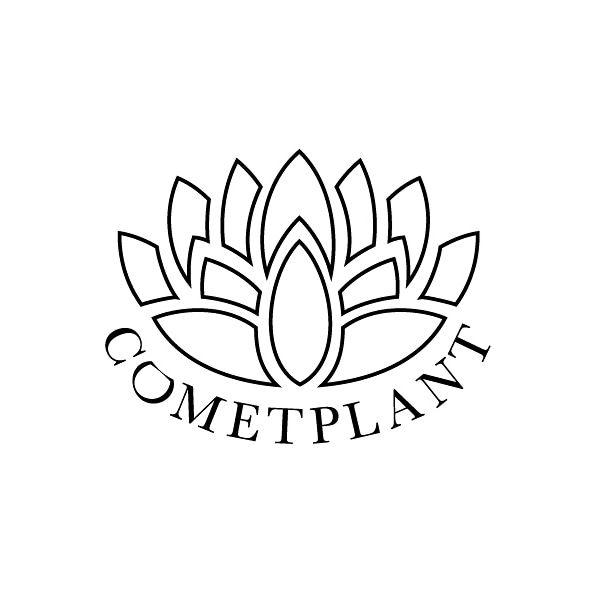 COMET PLANT