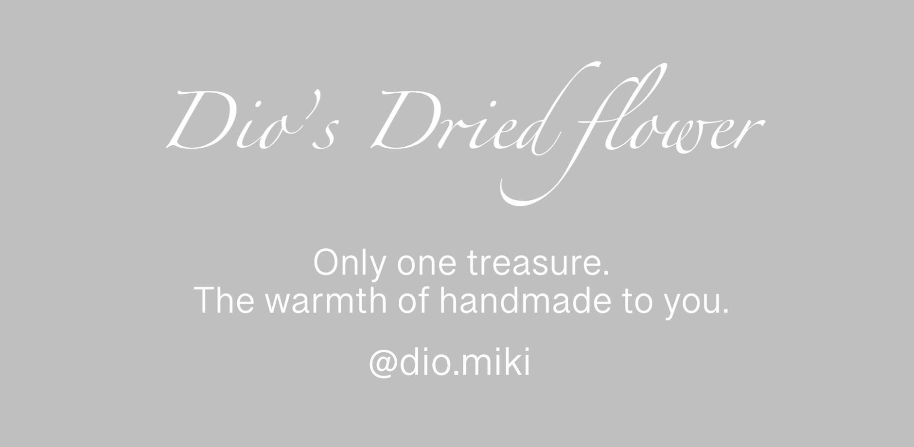 Dio's  Dried flower