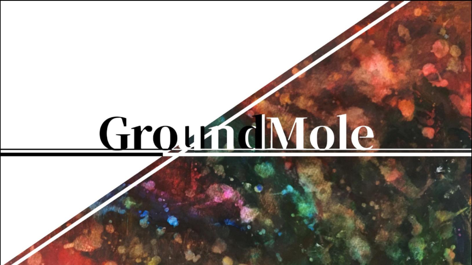 STORE - GroundMole
