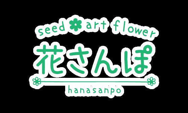 花さんぽ|種子、アートフラワー、栽培キット