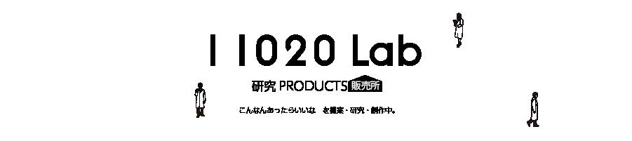 11020 Lab