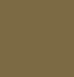 Viet Marché