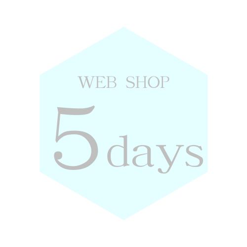 Web Shop -5days-
