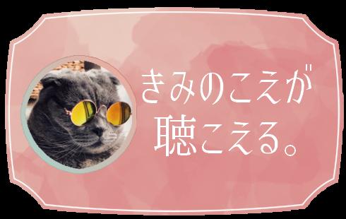 【おためし500円~】個人占い師きみのこえによる西洋占星術・ホロスコープ鑑定【メール・ビデオ電話】