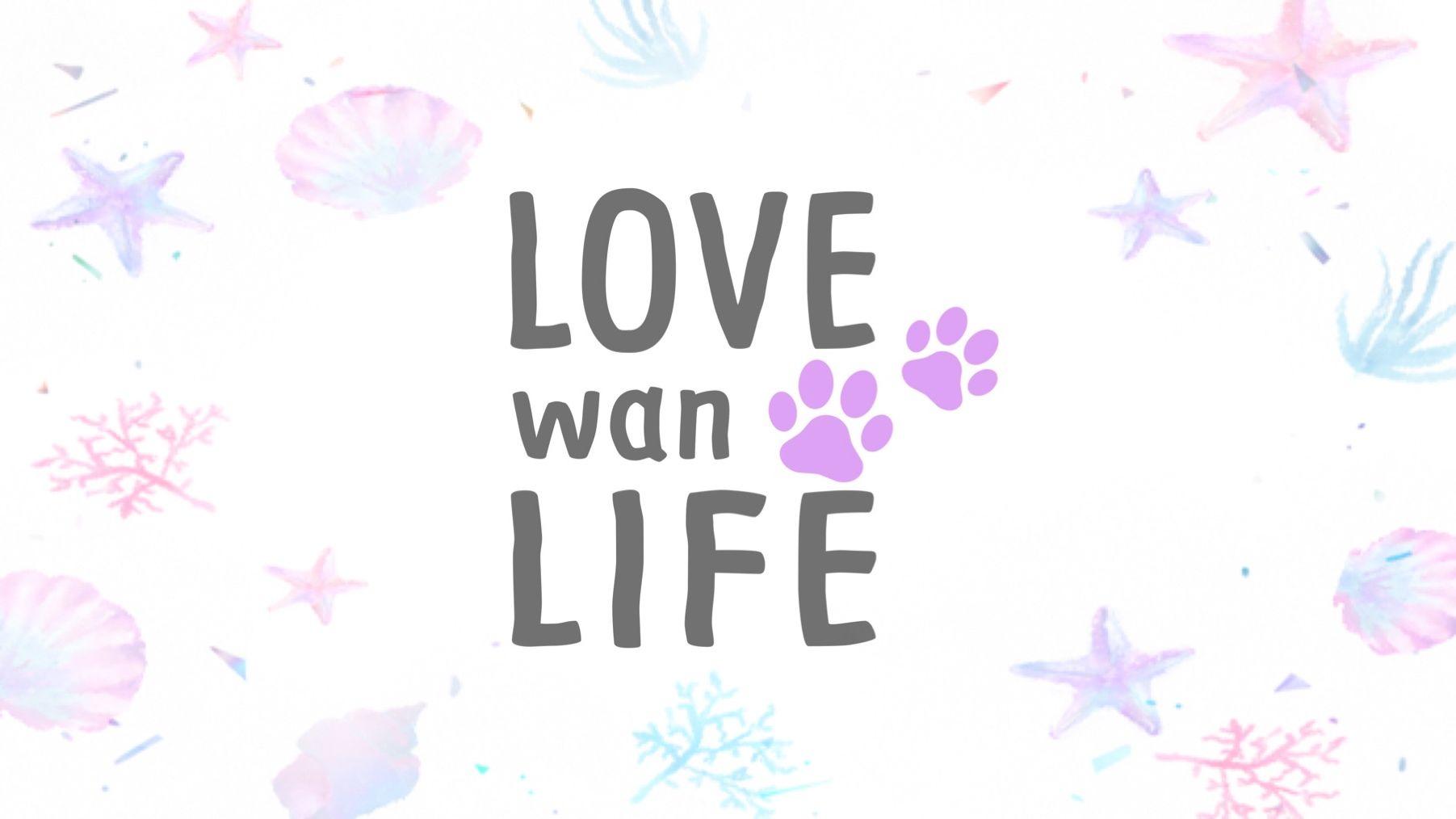 LOVE wan LIFE