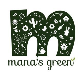 mana's green:塊根植物販売|マナズグリーン