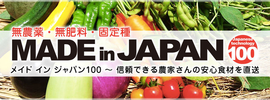 MADE in JAPAN 100