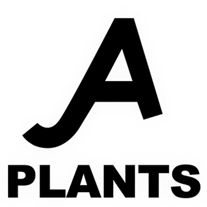A PLANTS|観葉植物の通販と店舗販売