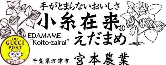 宮本農業(M) online store