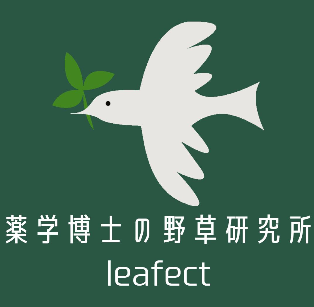 薬学博士の野草研究所 leafect