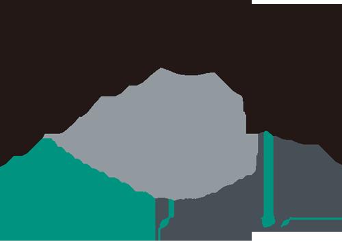 nanosol store