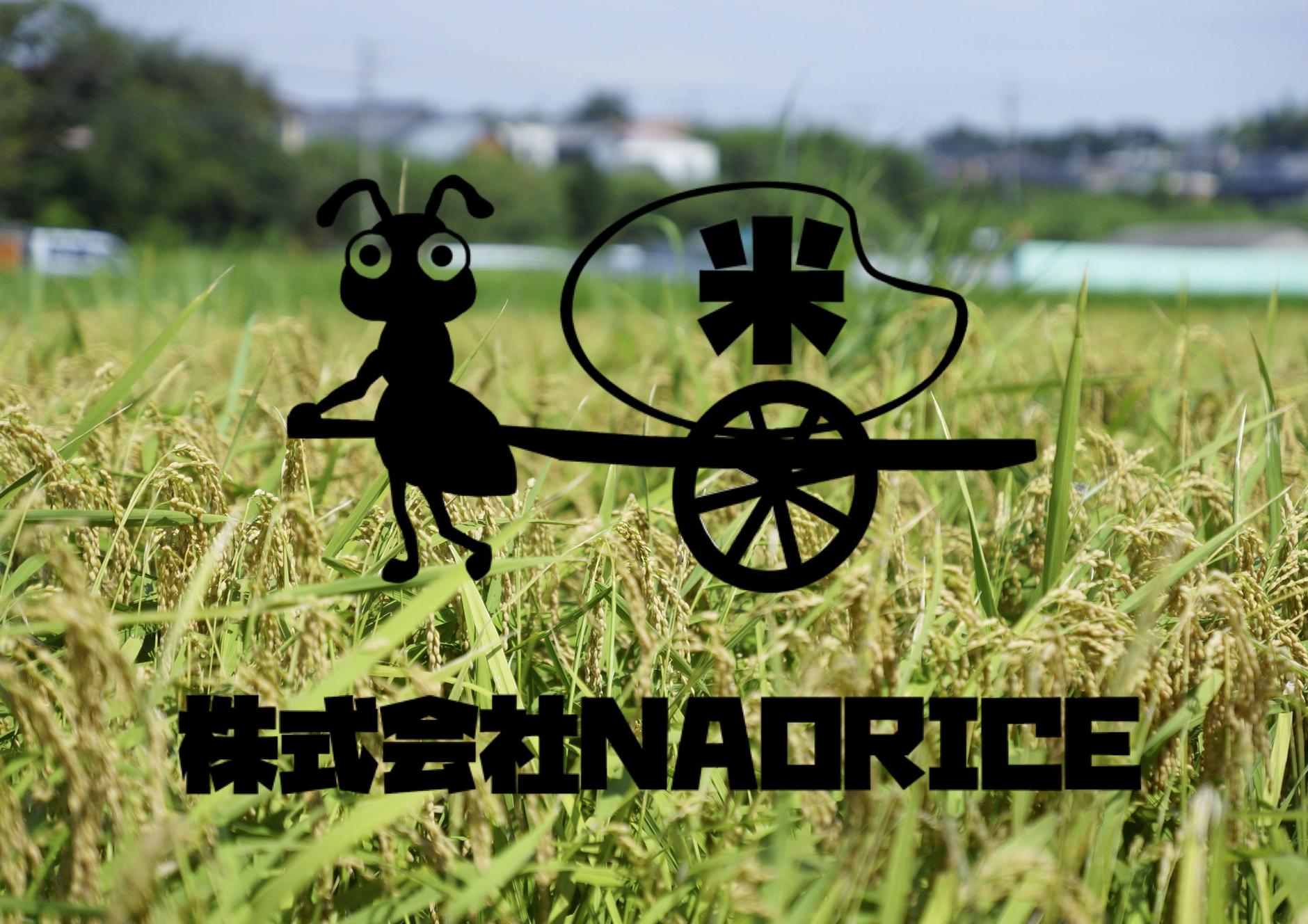 nao rice
