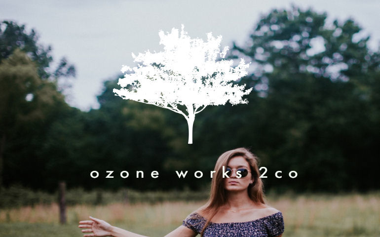 ozoneworks2co